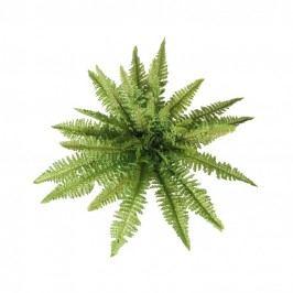 Művirág  Páfrány, átmérő 70 cm