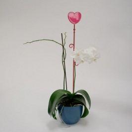 Orchidea pálca,szív, piros, 2 db
