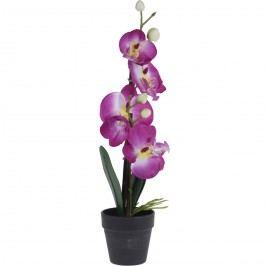 Orchidea virágtartóban rózsaszín, 38 cm