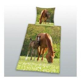 Lovak pamut ágynemű, 70 x 90 cm, 140 x 200 cm
