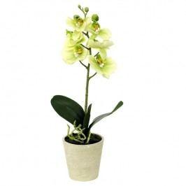 Művirág orchidea zöld, 39,5 cm