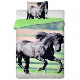 Jerry Fabrics Fekete ló pamut ágynemű, 140 x 200 cm, 70 x 90 cm