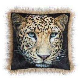 SAFARI Leopárd kispárna, 45 x 45 cm