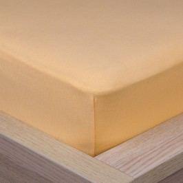 4Home Jersey lepedő elasztánnal sárgabarackszínű, 180 x 200 cm
