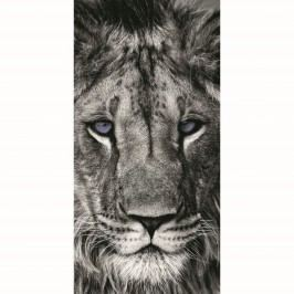 Jerry Fabrics Oroszlán törölköző, 70 x 140 cm