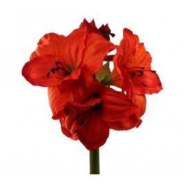 Művirág Amarilis