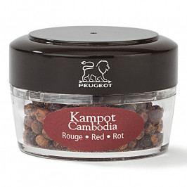 Peugeot ZANZIBAR tégely Kampot Cambodia piros borssal