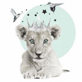 Lion King falmatrica - Dekornik