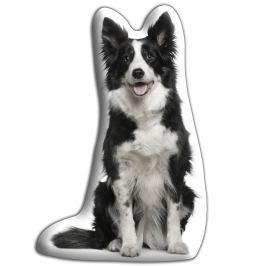 Border collie párna - Adorable Cushions