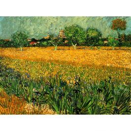 Vincent van Gogh - View of arles with irises in the foreground festményének másolata, 40 x 30 cm