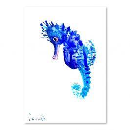 Seahorse poszter Surena Nersisyana-tól, 30 x 21 cm - Americanflat