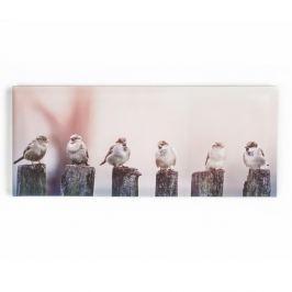 Morning Tweets fali kép, 100 x 40 cm - Graham & Brown