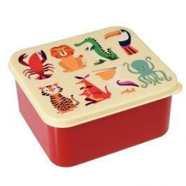 Colourful Creatures ételtároló doboz - Rex London