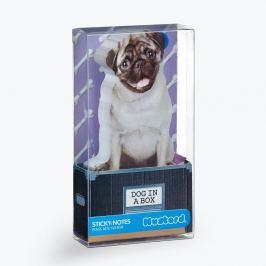 Dog in Box öntapadós jegyzettömb - Just Mustard