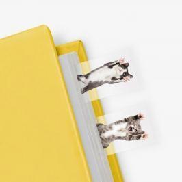 Cat in Box öntapadós könyvjelzők - Just Mustard