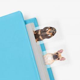 Dog in Box öntapadós könyvjelzők - Just Mustard