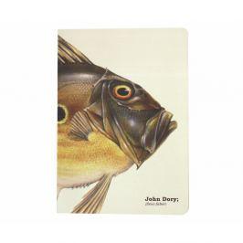John Dory Fish jegyzetfüzet, mérete: A5 - Gift Republic