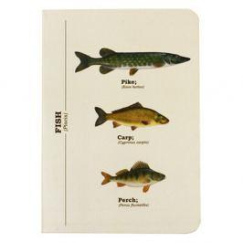 Multi Fish jegyzetfüzet, A6 méret - Gift Republic