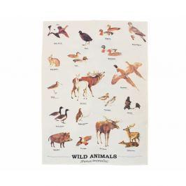 Wild Animals Multi pamut törlőkendő 50 x 70 cm - Gift Republic