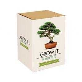 Bonsai Trees ültetőszett bonszai magokkal - Gift Republic