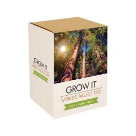 Sequoia The World Tallest Tree növénytermesztő készlet mamutfenyő magokkal - Gift Republic